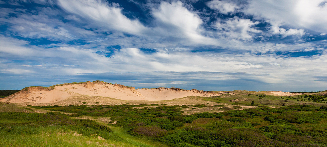 sand dunes in Prince Edward Island National Park, Canada